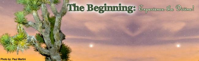 Joshua Tree Workshop: The Beginning, Mar 1, 2014