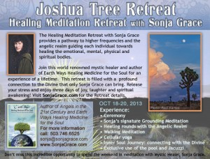 joshua tree retreat 2013