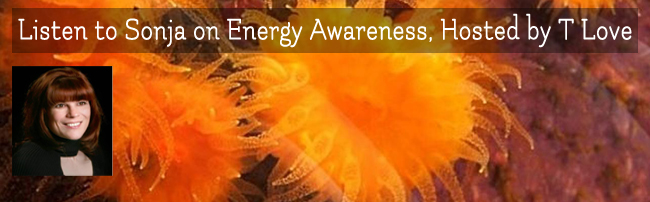 Sonja Grace Appears on Energy Awareness with T Love, 2-25-15
