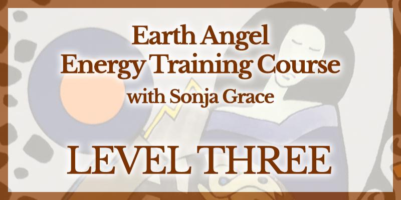 EA Training Level 3
