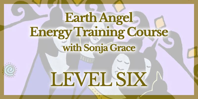 EA Training Level 6